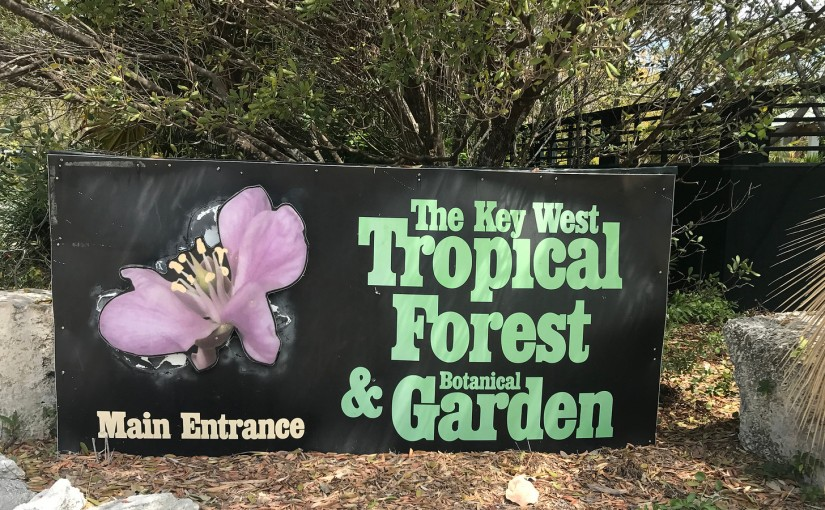 A Walk in Key West Tropical Forest & Botanical Gardens with Chiggers