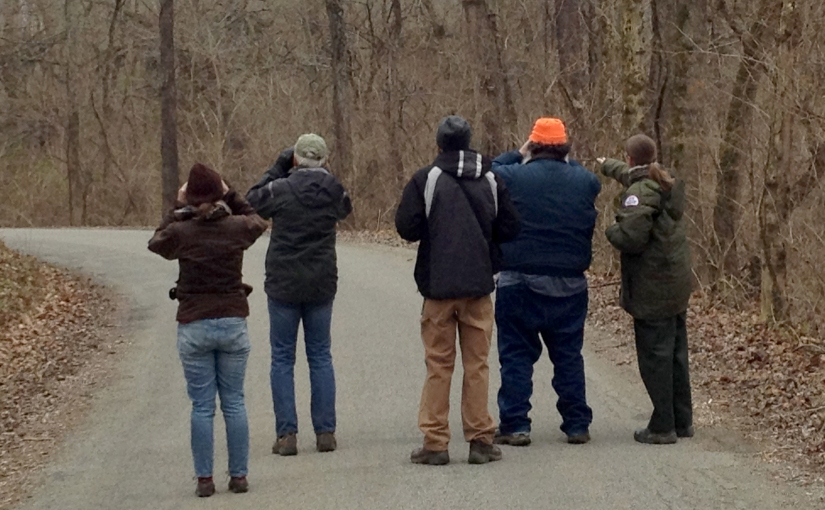 The Annual Christmas Bird Count (CBC)